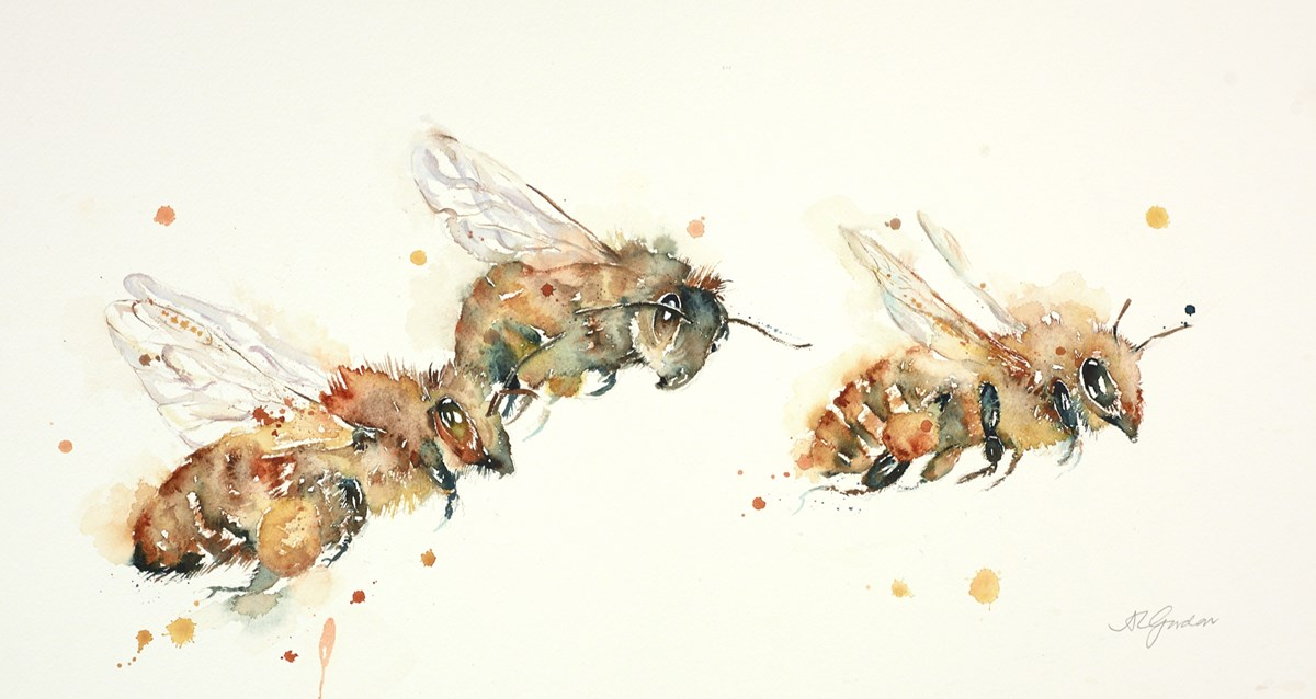 Humble Honey Bees